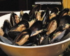 Mussels have a good source of Vitamin C